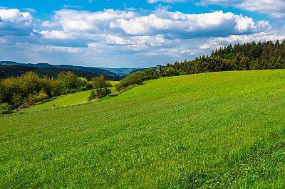 Zulassungsstelle Eifelkreis Bitburg Prüm Wunschkennzeichen BIT PRÜ