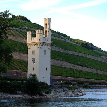 Zulassungsstelle Mainz-Bingen Termin online reservieren