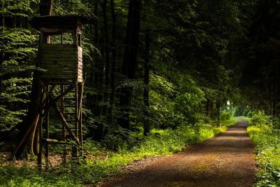 zulassungsstelle westerwaldkreis wunschkennzeichen