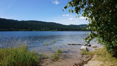 zulassungsstelle landkreis breisgau hochschwarzwald terminvereinbarung